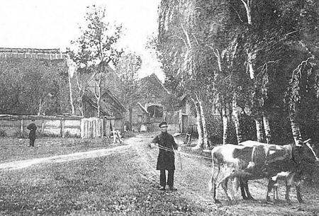 Dorfansicht von Süthen um 1865. Quelle: Rundlingsverein
